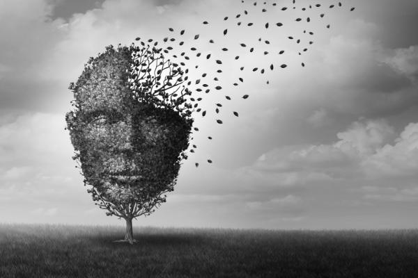 דימיון, עץ נפש האדם, התפזרות מחשבות